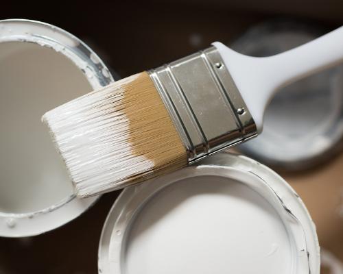 Volunteer Painters required!